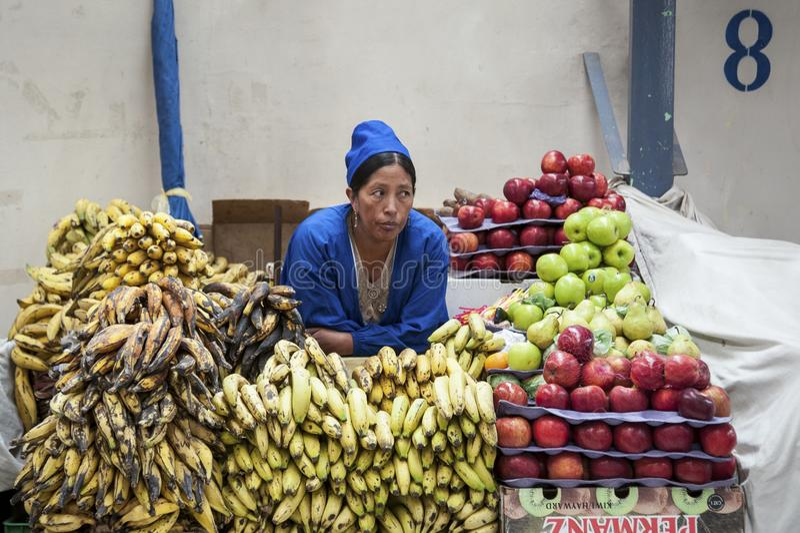 Mujer boliviana no identificada que vende las frutas en el mercado central en Sucre, Bolivia fotografía de archivo