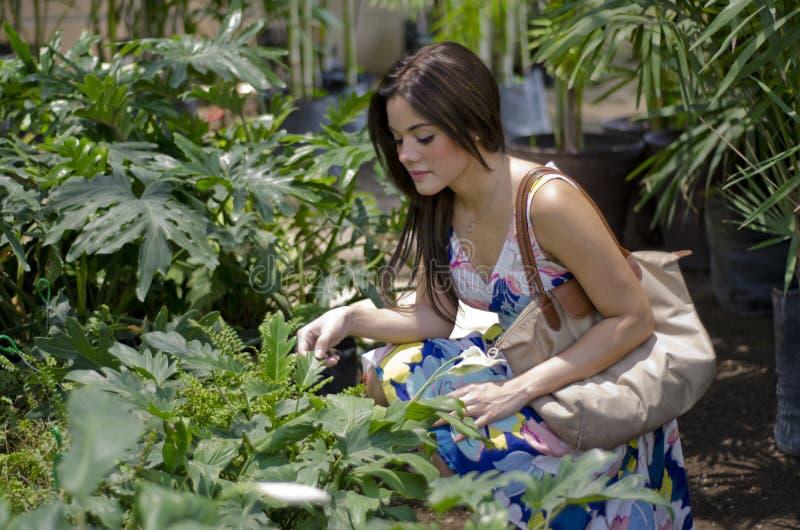 Mujer bonita que compra algunas plantas fotografía de archivo libre de regalías