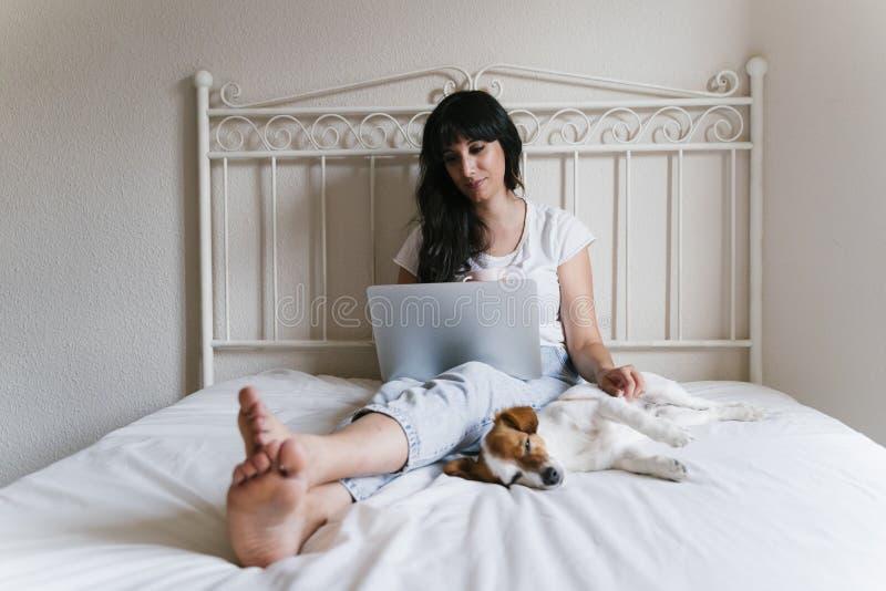 Mujer caucásica joven en la cama que trabaja en el ordenador portátil Pequeño perro lindo que miente además de Amor para los anim imagen de archivo
