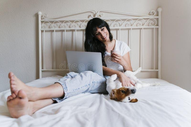 Mujer caucásica joven en la cama que trabaja en el ordenador portátil Pequeño perro lindo que miente además de Amor para los anim imagenes de archivo