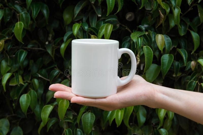 Mujer caucásica joven que sostiene la taza blanca disponible de la maqueta en fondo verde de la naturaleza del follaje del árbol  fotos de archivo