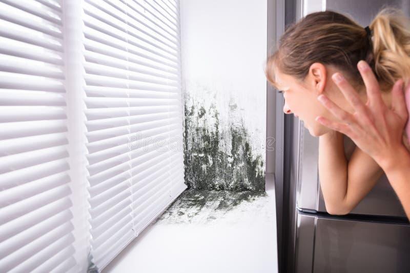Mujer chocada que mira el molde en la pared imagen de archivo