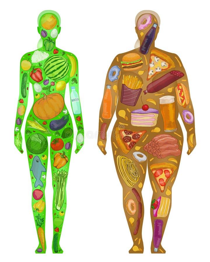 Mujer, comida en el cuerpo, grueso fino, ejemplo del vector ilustración del vector