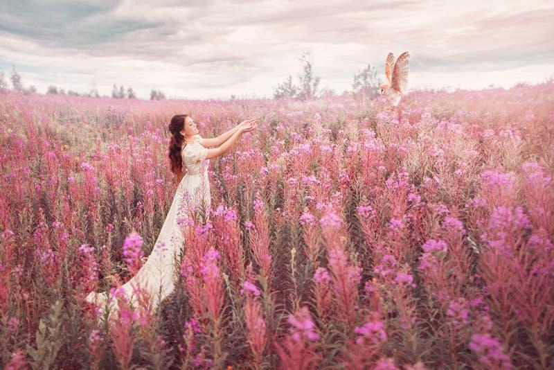 Mujer con el búho en el campo de flores rosadas foto de archivo libre de regalías