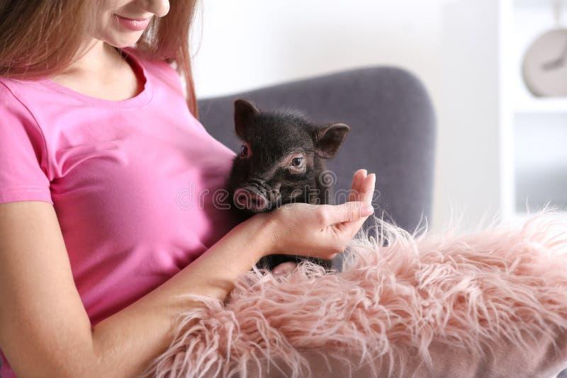 Mujer con el mini cerdo lindo en el sofá en casa imágenes de archivo libres de regalías