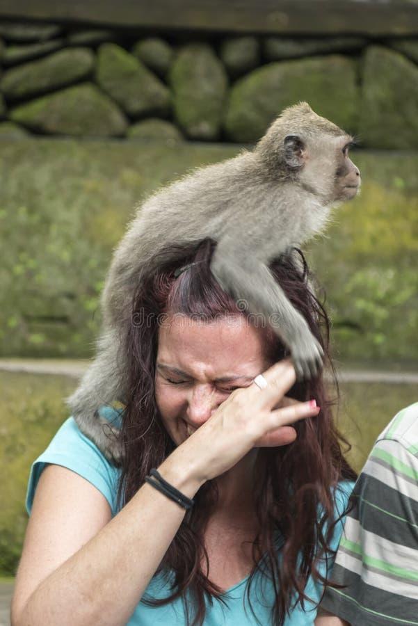 Mujer con el mono en la cabeza fotografía de archivo