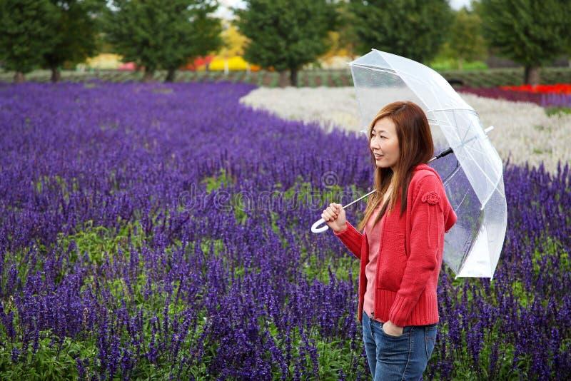 Mujer con el paraguas en la granja de la lavanda de Tomita, Hokkaido imágenes de archivo libres de regalías