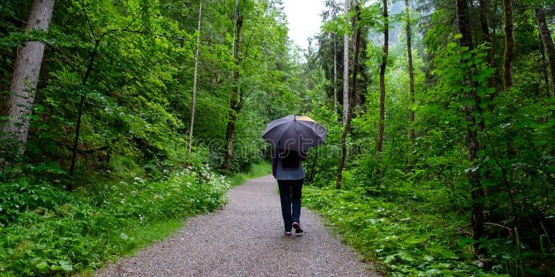 Mujer con el paraguas en una pista de senderismo en la lluvia fotografía de archivo libre de regalías