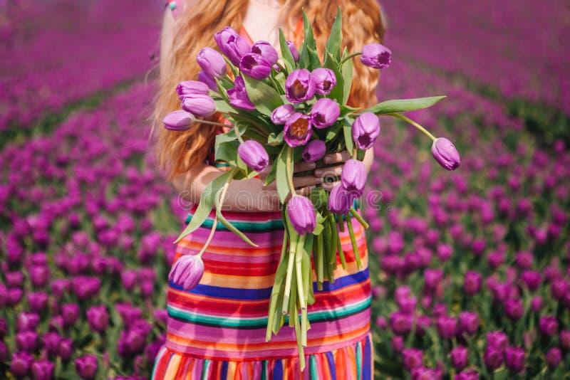 Mujer con el pelo rojo largo que lleva un vestido rayado que sostiene un ramo de flores p?rpuras de los tulipanes en fondo en cam fotografía de archivo