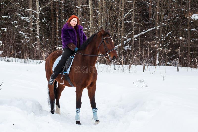 Mujer con el pelo rojo y el caballo grande al aire libre en invierno fotos de archivo