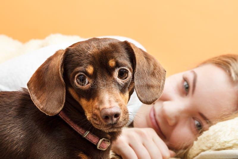 Mujer con el perro que despierta en cama después de dormir imagen de archivo libre de regalías