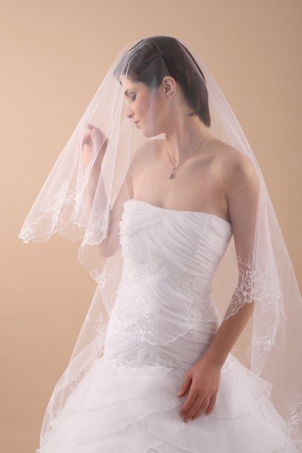 Mujer con el velo de novia transparente fotos de archivo