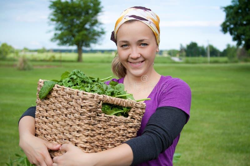 Mujer con espinaca de cosecha propia fotografía de archivo