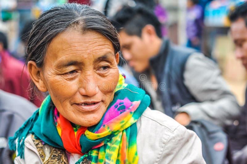 Mujer con la bufanda en Bihar imágenes de archivo libres de regalías