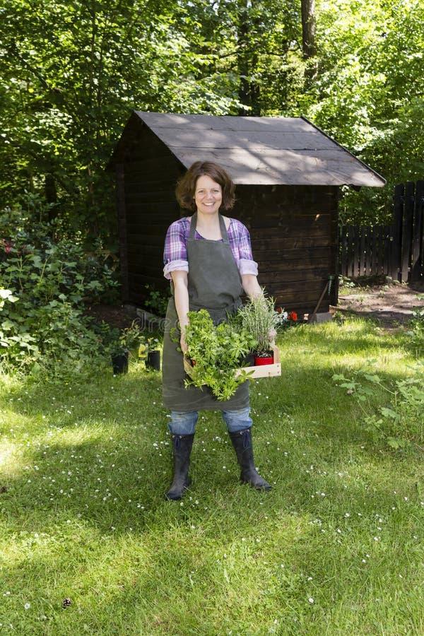 Mujer con las hierbas en un jardín foto de archivo