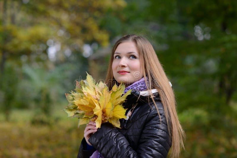 Mujer con las hojas de arce imagen de archivo