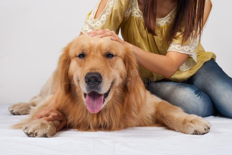 Mujer con su perro hermoso que miente en estudio fotos de archivo