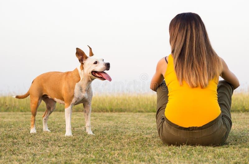 Mujer con su perro que se sienta en la hierba y la dulzura de los intercambios fotografía de archivo