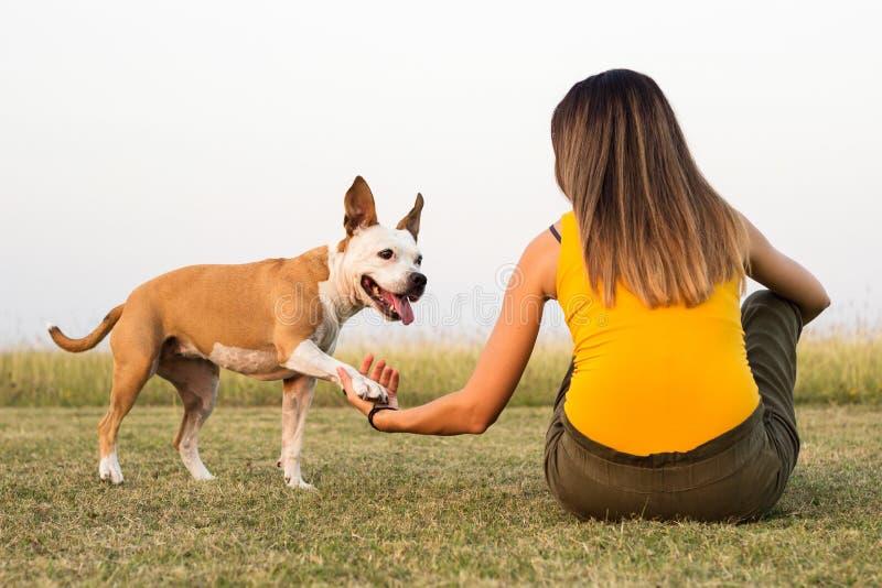 Mujer con su perro que se sienta en la hierba y la dulzura de los intercambios fotos de archivo libres de regalías