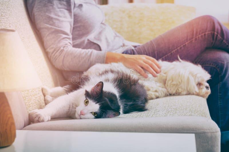 Mujer con sus animales domésticos imagen de archivo