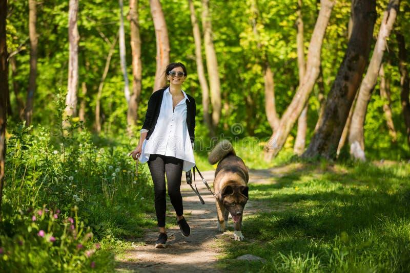 Mujer con un perro americano de Akita foto de archivo