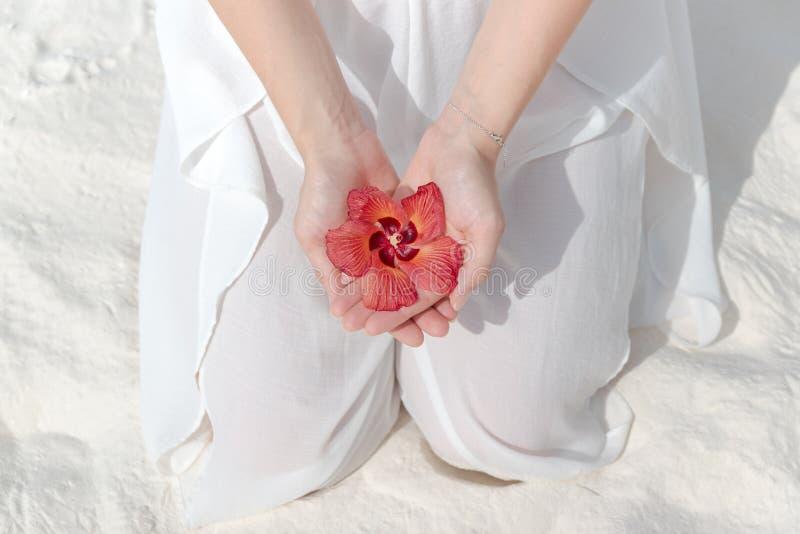 Mujer de arrodillamiento en el vestido blanco que sostiene una flor tropical en su mano foto de archivo libre de regalías