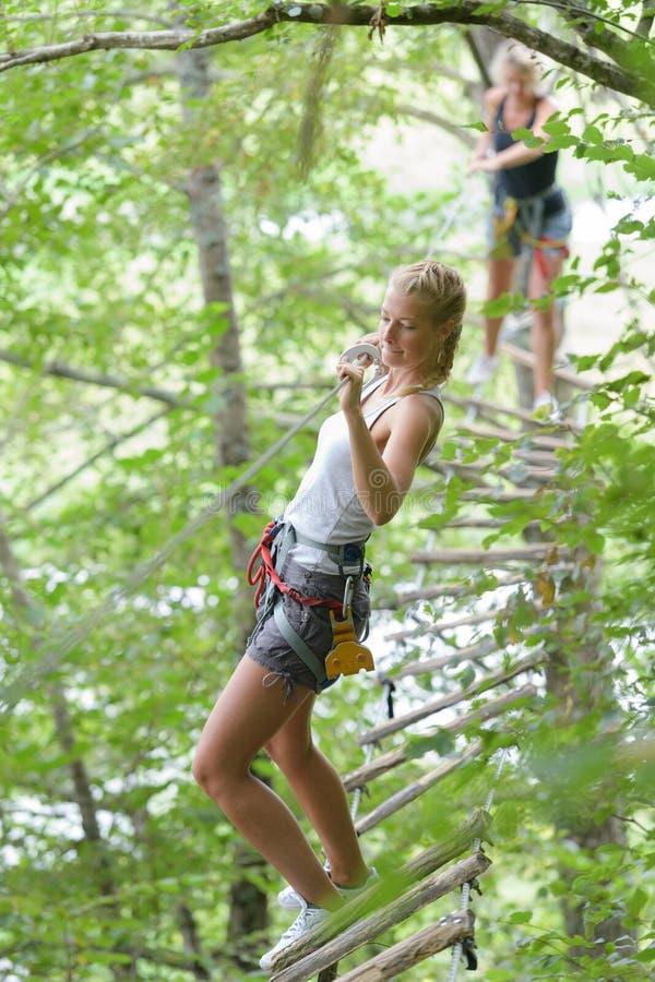 Mujer de Fite que sube en cuerda en el parque de la aventura imagen de archivo libre de regalías