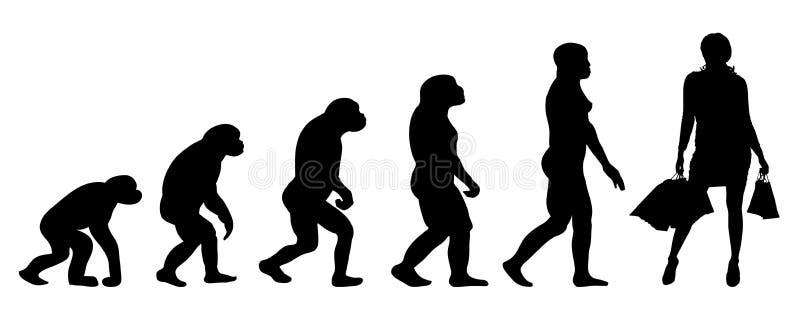 Mujer de la evolución stock de ilustración