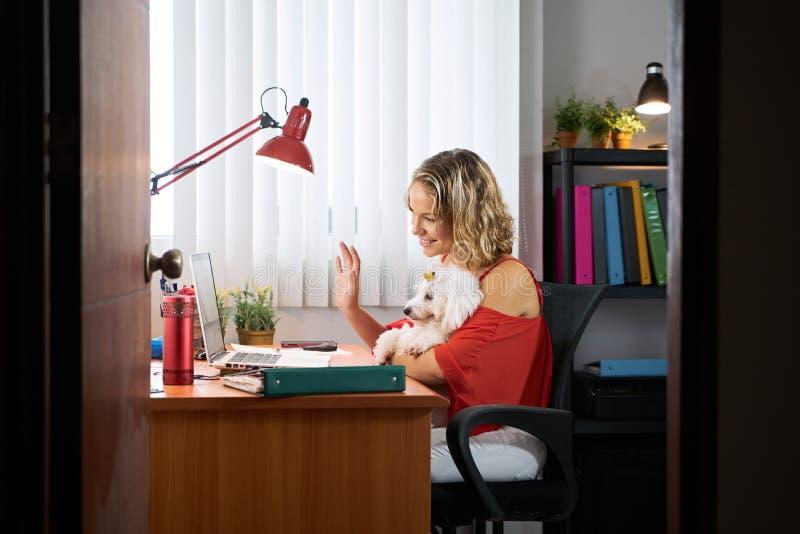 Mujer de la oficina que sostiene el perro durante la audioconferencia de Skype fotos de archivo