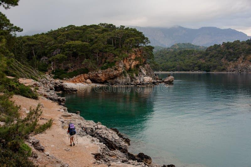 Mujer de la vista posterior con la mochila y los palillos el caminar que camina en la costa rocosa fotos de archivo libres de regalías
