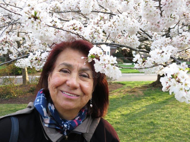 Mujer de Latina que goza de Cherry Blossoms imagen de archivo