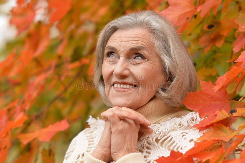 Mujer de mediana edad hermosa en el fondo de las hojas de otoño fotografía de archivo