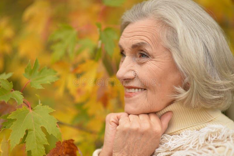 Mujer de mediana edad hermosa en el fondo de las hojas de otoño fotografía de archivo libre de regalías