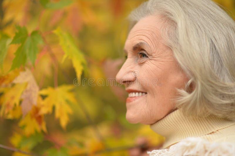 Mujer de mediana edad hermosa en el fondo de las hojas de otoño foto de archivo libre de regalías