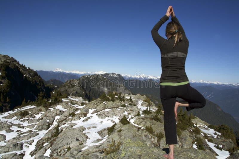 Mujer de mediana edad que lleva a cabo actitud del árbol de la yoga de Hatha en picos de montaña de Snowcap del invierno A.C. imágenes de archivo libres de regalías