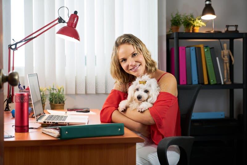 Mujer de negocios del retrato que trabaja con el perro casero en oficina imagen de archivo libre de regalías