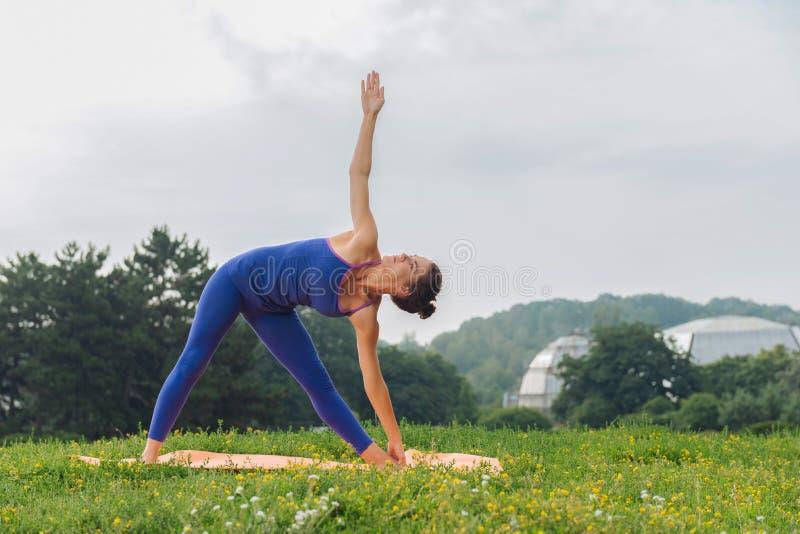 Mujer de pelo oscuro que se coloca en actitud estándar de la yoga fotografía de archivo libre de regalías