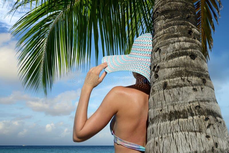 Mujer debajo de una palmera que mira el sueño del océano imágenes de archivo libres de regalías