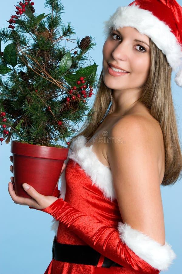 Mujer del árbol de navidad fotos de archivo libres de regalías