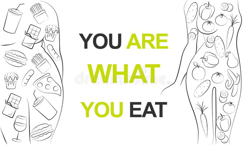 Mujer del ajuste que come la comida verde sana de las verduras o a la muchacha gorda que come los alimentos de preparaci?n r?pida ilustración del vector