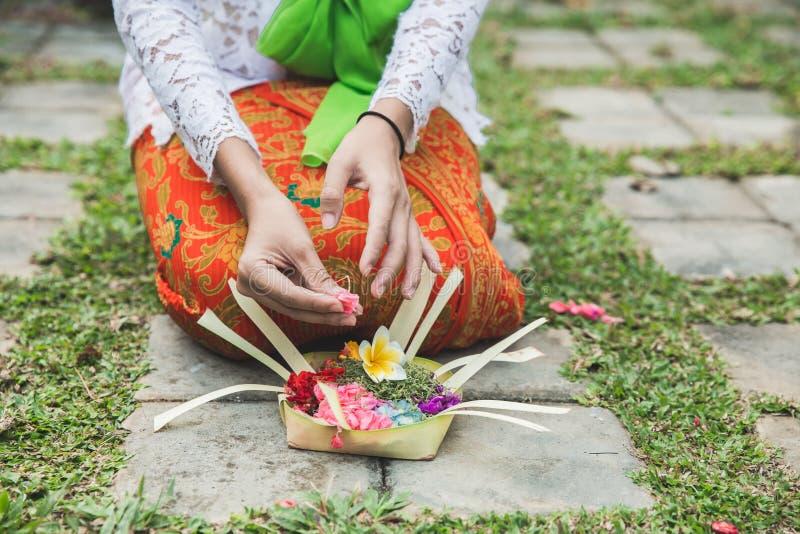 Mujer del Balinese que hace la sari de ofrecimiento del canang del ritual y que ruega en imagenes de archivo