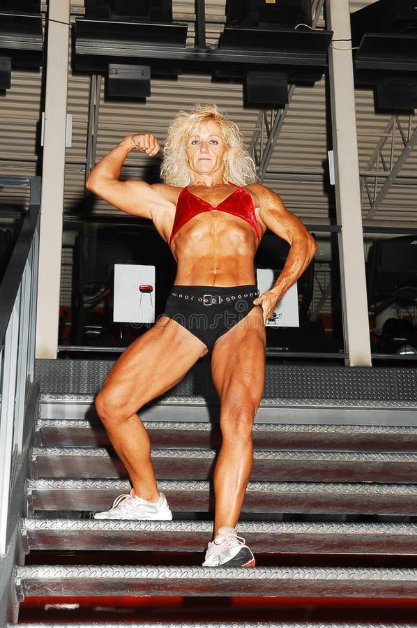 Mujer del Bodybuilding. fotografía de archivo libre de regalías