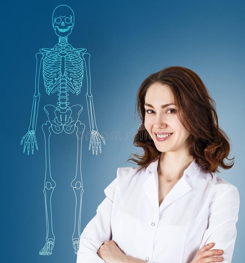 Mujer del doctor que coloca el esqueleto cercano del ser humano del dibujo imagen de archivo libre de regalías