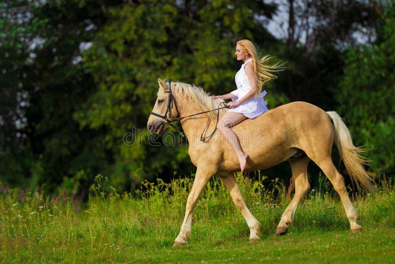 Mujer del jinete rubia con el pelo largo en un vestido blanco con un tren que presenta en un caballo del palamino fotografía de archivo