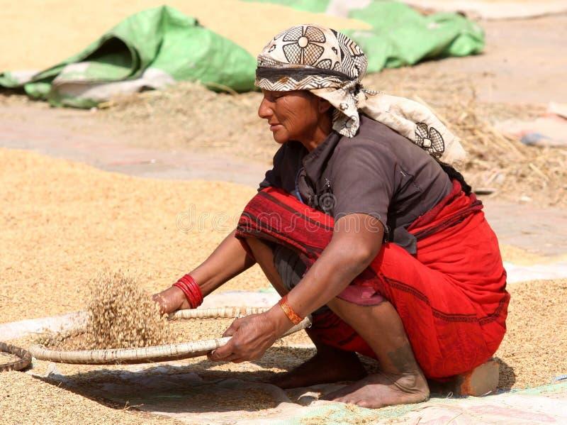 Mujer del Nepali fotos de archivo