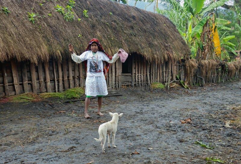 Mujer del Papuan en la ropa blanca moderna fotos de archivo