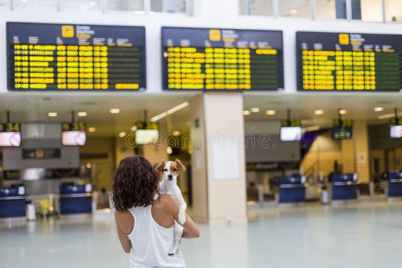 mujer del viajero y su perro en el aeropuerto fondo de pantallas de la información viaje y transporte con concepto de la tecnolog fotografía de archivo libre de regalías
