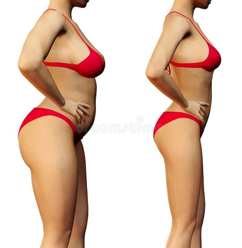 Mujer delgada antes y después ilustración del vector