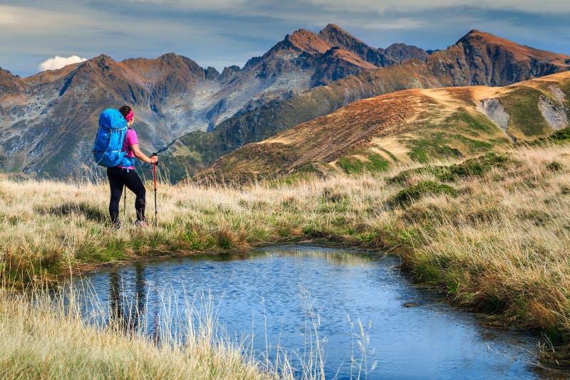 Mujer deportiva del caminante en las montañas de Fagaras, Cárpatos, Transilvania, Rumania, Europa imagen de archivo libre de regalías