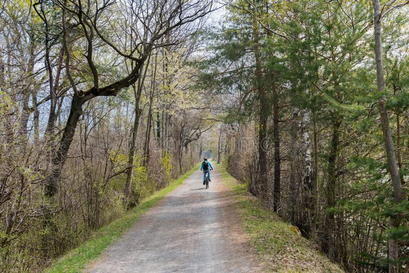 Mujer deportiva que monta una bicicleta a lo largo de una trayectoria de la suciedad a través de un bosque colorido hermoso del  foto de archivo libre de regalías